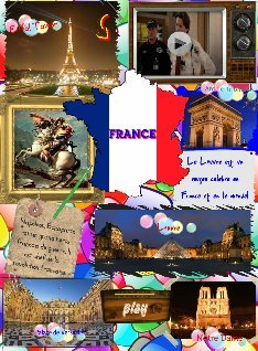 Report on France